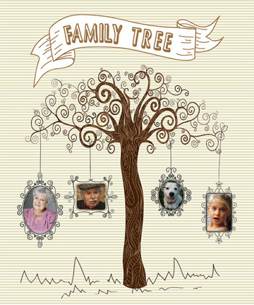 Family Tree Photo Collage.