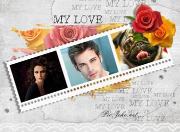 Collages Románticos con Rosas.